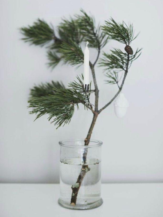 En kvist gran eller tall för under för julstämningen i kroppen, då den trygga doften av jul sprider sig i hemmet